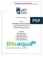Miriam Ingenieria de Proyectos Bioaqua