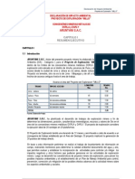 ResumenEjecutivo_Proyecto_Millo