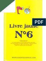 Livre Jaune N° 6