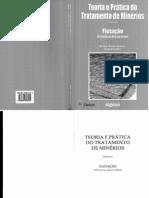 Teoria e Pratica Do Tratamento de Minerios Volume 04