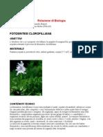 Relazione Di Biologia- Fotosintesi Cloroflilliana