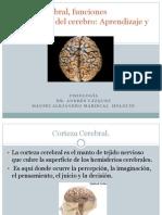 capitulo 57 Corteza Cerebral, Hansei Mariscal.pptx