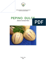 Pepino Dulce Manual
