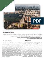 60 Anos Introducao.pdf