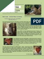 Newsletter Vol 1-1L