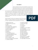 Dina_ManualdeDinamicas.doc