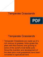 Temperate Grass Lands