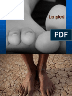 pied 2013.ppt