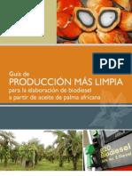 Guia de p+l Biodiesel - Honduras
