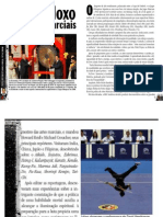 Paradoxo das Artes Marciais FighterOnline