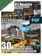 El Puente Araguita Mercado Negro