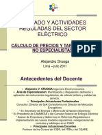 CursoTarifas_PresentacionSruoga_v2011