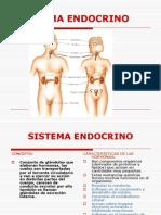 Sistema Endocrino Clase