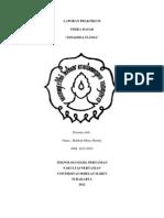 Laporan Praktikum Dinamika Fluida Malikah Meny h