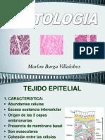 02. Histologia