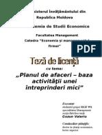 Planul-de-afaceri.pdf