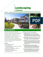 Landscaping Guide
