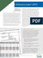 Descripción del Progress out of Poverty Index (PPI - Grameen Foundation)