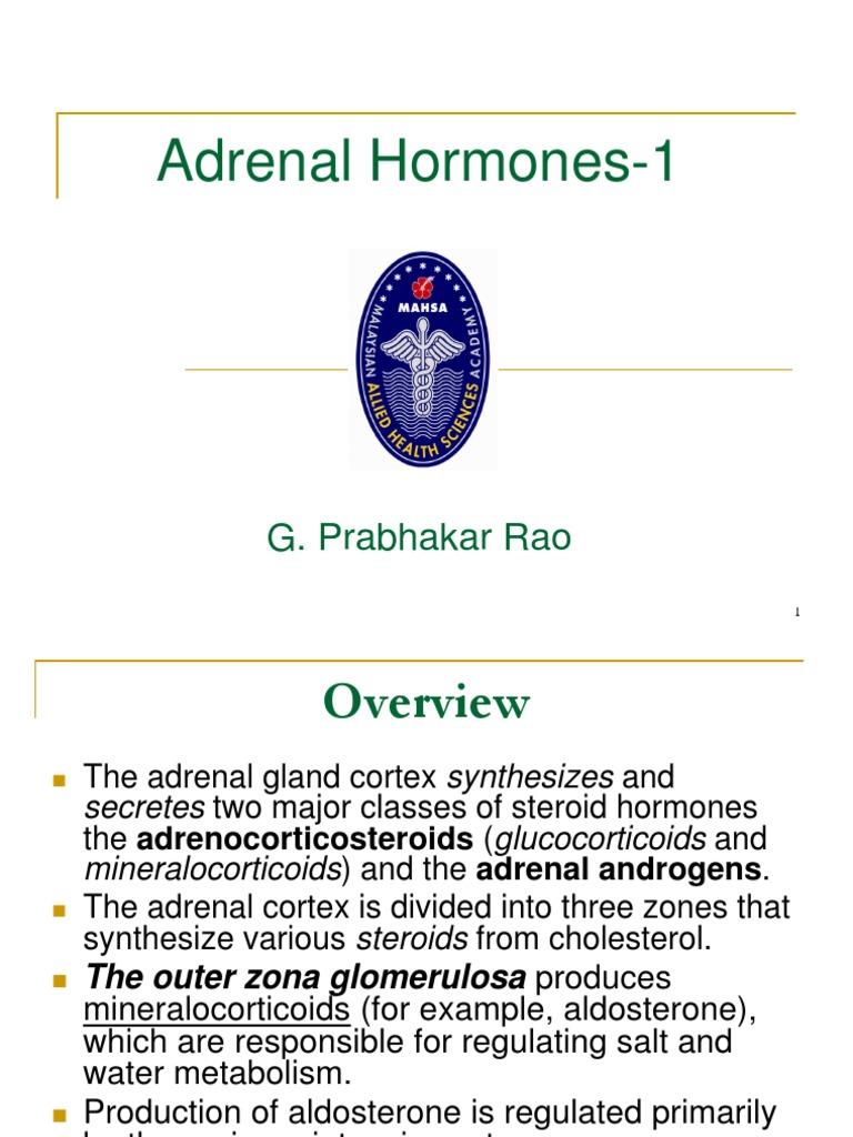 Adrenal Hormones 1 Adrenal Gland Glucocorticoid