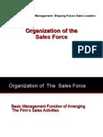 Slides Organizing the Salesforce