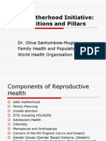 Definitions and pillars for Safemother hood.ppt