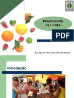 Pos Colheita de Frutas
