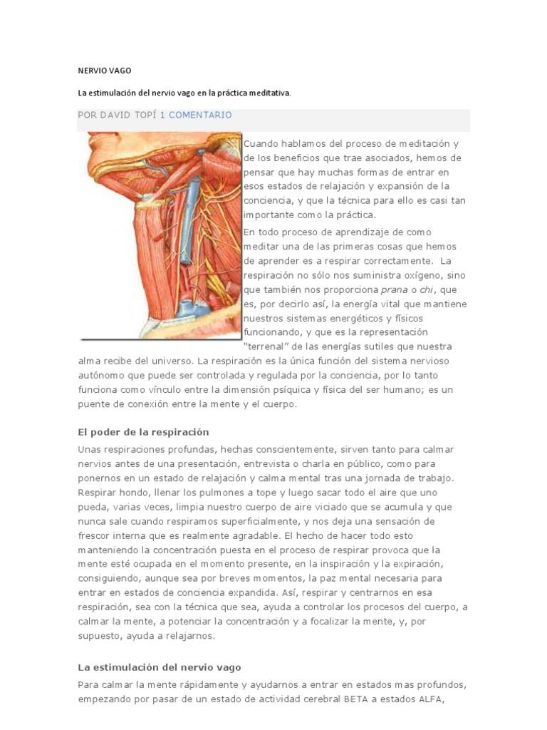 Fantástico Anatomía Y Fisiología Direccionales Términos Emparejan ...