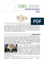 napi130329.pdf