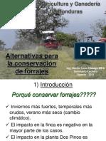 Alternativas Conservacion de Forrajes