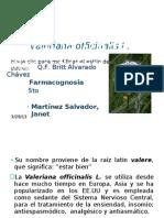 Valeriana Officinales L