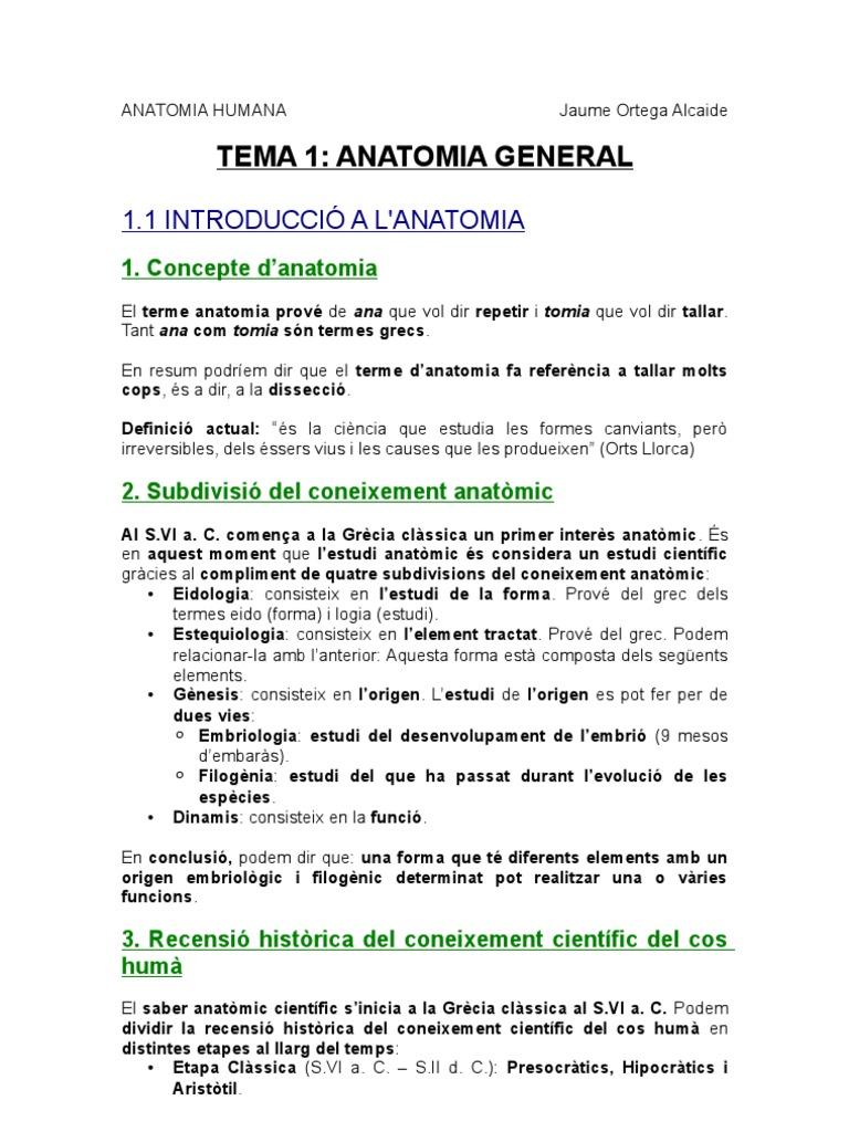 T.1 Anatomia Humana