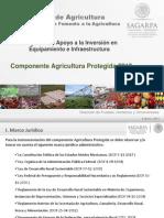 AGRICULTURA PROTEGIDA DGFA_Publicación_Michoacán