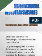 T80996transmisión neuronal - neurotransmisores