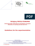 Bridging Guidelines Ingl