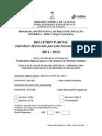 38149_Relatório_Parcial_145009_12-03-2013_234622 (1)