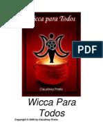 Wicca Sorprendente