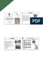 Proteccion-de-Redes-de-Distribucion-UNI-Peru.pdf