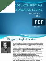 MODEL KONSEPTUAL KEPERAWATAN LEVINE.pptx