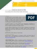 XXX Cómo aplicar ARBOLES DE DECISION EN SPSS