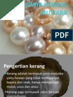 Power Ppoin Kerang Mutiara