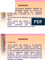 NUTRICION-FASES