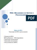 Aula RNA