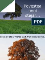Povestea stejarului...