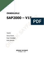 SAP2000v15_OrnekSayfalar