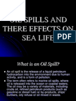 Oil Spills and There Effects on Sea Life