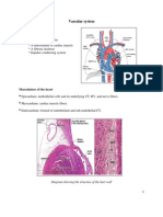 9`- Cardiovascular system.pdf