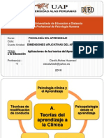 Dimensiones Aplicativas Del Aprendizaje Sem7