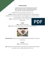 OSNOVNE MUDRE.pdf