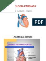 Fisiologia-Cardiaca.pps