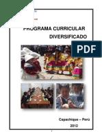 Programa Curricular Diversificado 2012 - Yuraccama